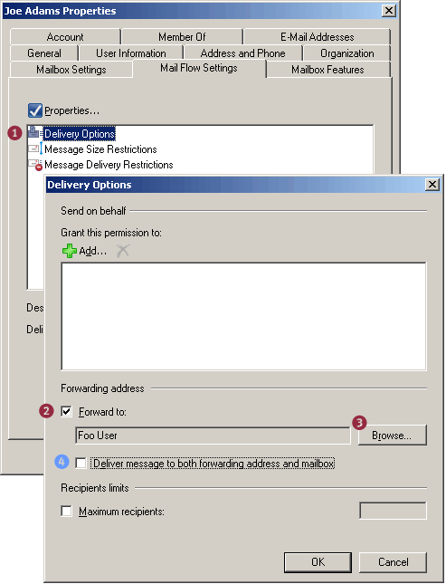 Screenshot: Delivery Options -< Forwarding Address in Exchange 2007